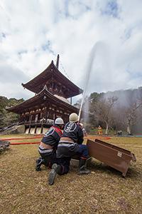 写真:平成28年1月26日 根来寺(和歌山県岩出市)